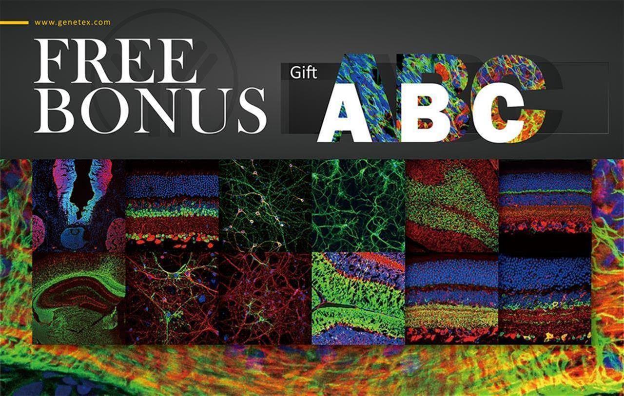 Free Bonus Gift