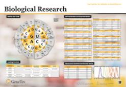 Biological Research