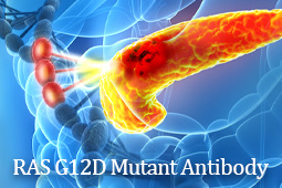 GeneTex Launches Novel Recombinant RAS (G12D Mutant) Antibody [HL10]