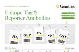 Epitope Tags and Reporters