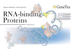 Flyer - RNA-binding Proteins