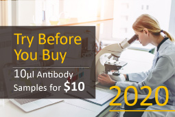 GeneTex Antibody Trial Program - Try Before You Buy