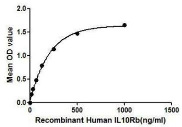 Human IL10 Receptor beta protein (active). GTX00131-pro