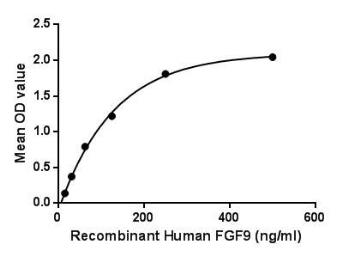Human FGF9 protein (active). GTX00225-pro