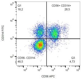 Anti-NKG2D antibody [1D11] (FITC) used in Flow cytometry (FACS). GTX00469-06