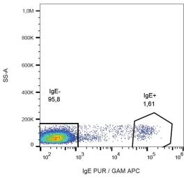 Anti-Human IgE antibody [BE5] used in Flow cytometry (FACS). GTX00589