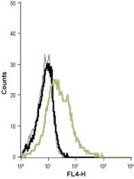 Anti-KCNN4 antibody [6C1] used in Flow cytometry (FACS). GTX00627