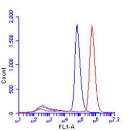 Anti-beta Catenin antibody [N1N2-2], N-term used in Flow cytometry (FACS). GTX101435