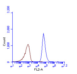Anti-LC3B antibody used in Flow cytometry (FACS). GTX127375