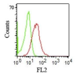 Anti-CD1b antibody [RIV12] used in Flow cytometry (FACS). GTX34473