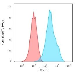 Anti-CD20 antibody [rIGEL/773] used in Flow cytometry (FACS). GTX34476