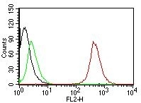 Anti-CD63 antibody [NKI/C3] used in Flow cytometry (FACS). GTX34538