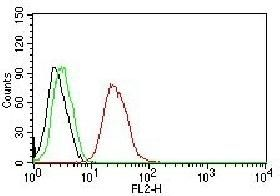 Anti-Estrogen Receptor beta antibody [ERb455] used in Flow cytometry (FACS). GTX34711