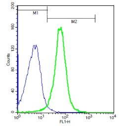 Anti-BAMBI antibody used in Flow cytometry (FACS). GTX51308