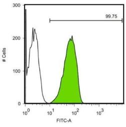 Anti-SOX2 antibody [GT1876] used in Flow cytometry (FACS). GTX627404