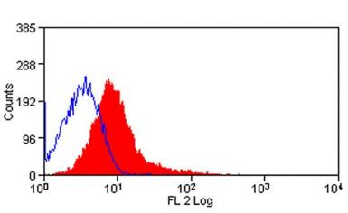 Anti-Dendritic cells antibody [OX-62] (PE) used in Flow cytometry (FACS). GTX74594