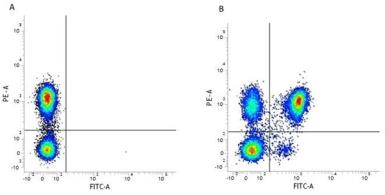 Anti-CD4 antibody [RPA-T4] (FITC) used in Flow cytometry (FACS). GTX74817