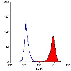 Anti-VCAM1 / CD106 antibody [STA] (PE) used in Flow cytometry (FACS). GTX75988