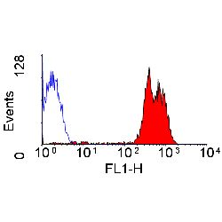 Anti-CD43 antibody [DFT-1] (FITC) used in Flow cytometry (FACS). GTX76309