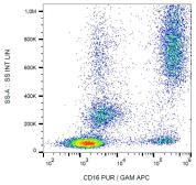 Anti-CD16 antibody [3G8] used in Flow cytometry (FACS). GTX00468