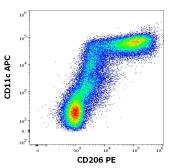 Anti-Mannose Receptor antibody [43511] (PE) used in Flow cytometry (FACS). GTX00491-08