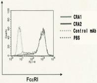 Anti-Fc epsilon R1 alpha antibody [CRA1] used in Flow cytometry (FACS). GTX00711