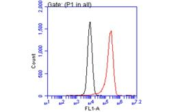 Anti-E-Cadherin antibody [GT477] used in Flow cytometry (FACS). GTX629691