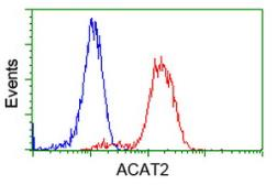 Anti-ACAT2 antibody [1B7] used in Flow cytometry (FACS). GTX84968