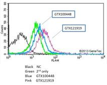 Anti-EGFR antibody [N1-2], N-term used in Flow cytometry (FACS). GTX121919